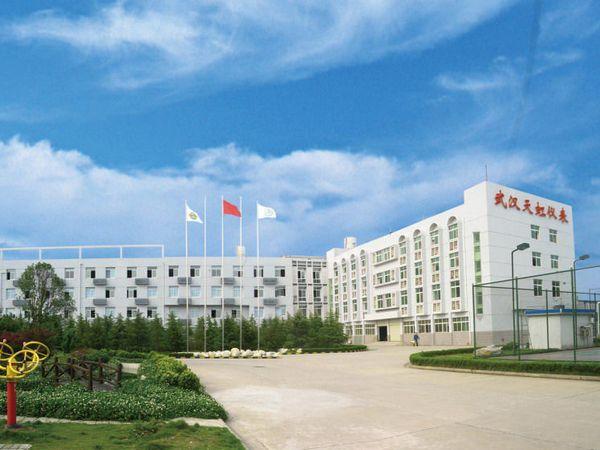 武汉市天虹仪表有限责任公司